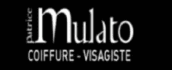 Mulato produit coiffeur paris